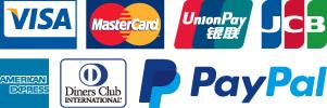 visa,  mastercard, Union Pay, JCB,  Amex, Diners Club, Paypal